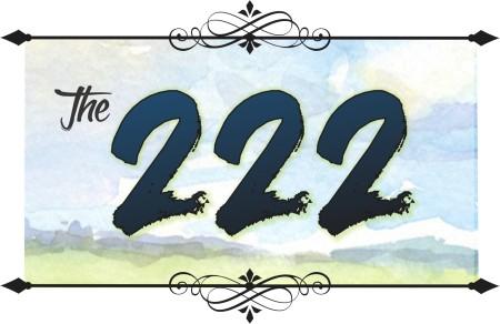 The 222 Logo
